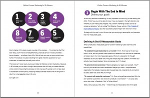 Sample page Online Content Marketing In 30 Minutes
